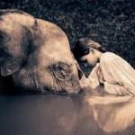 Compassion Practices & Benefits