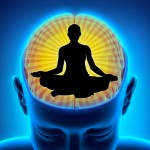 Your Brain on Meditation