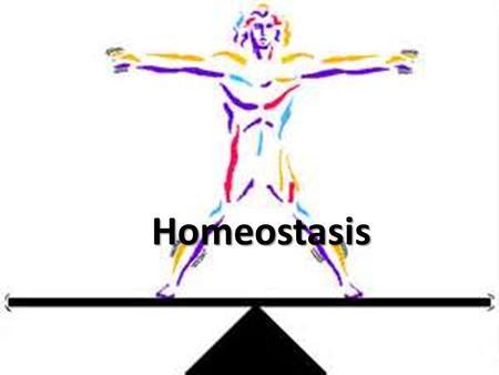 Mindful Equanimity and Homeostasis - Mindful Happiness