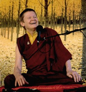 pemachodron_mindfulhappiness